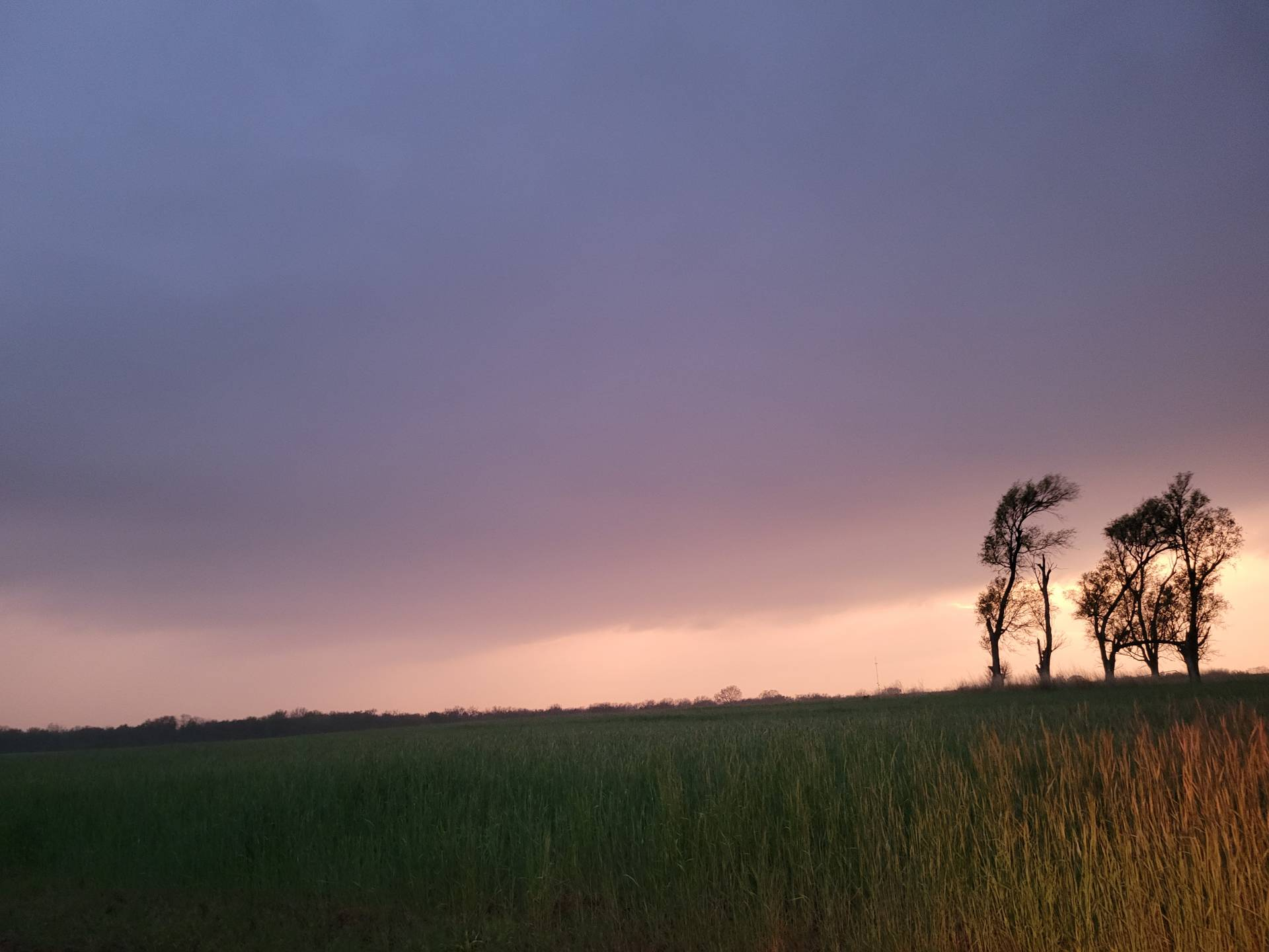 Storm near Argonia is starting to fall apart at Sunset. #kswx