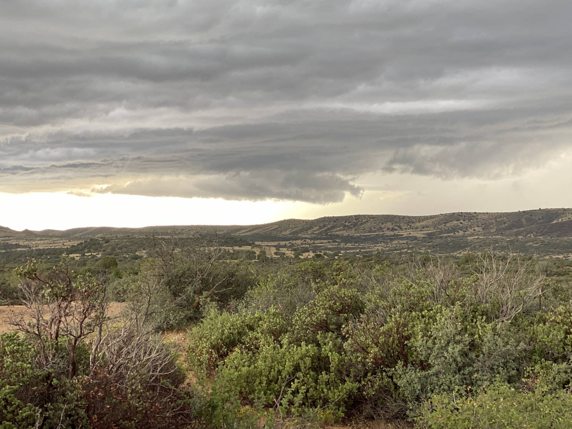 The cell over Spring Valley now. #azwx